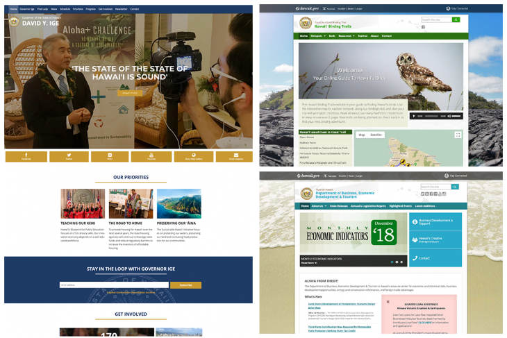 screenshot of websites using hawaii state template